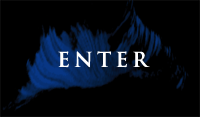 Enter the Site